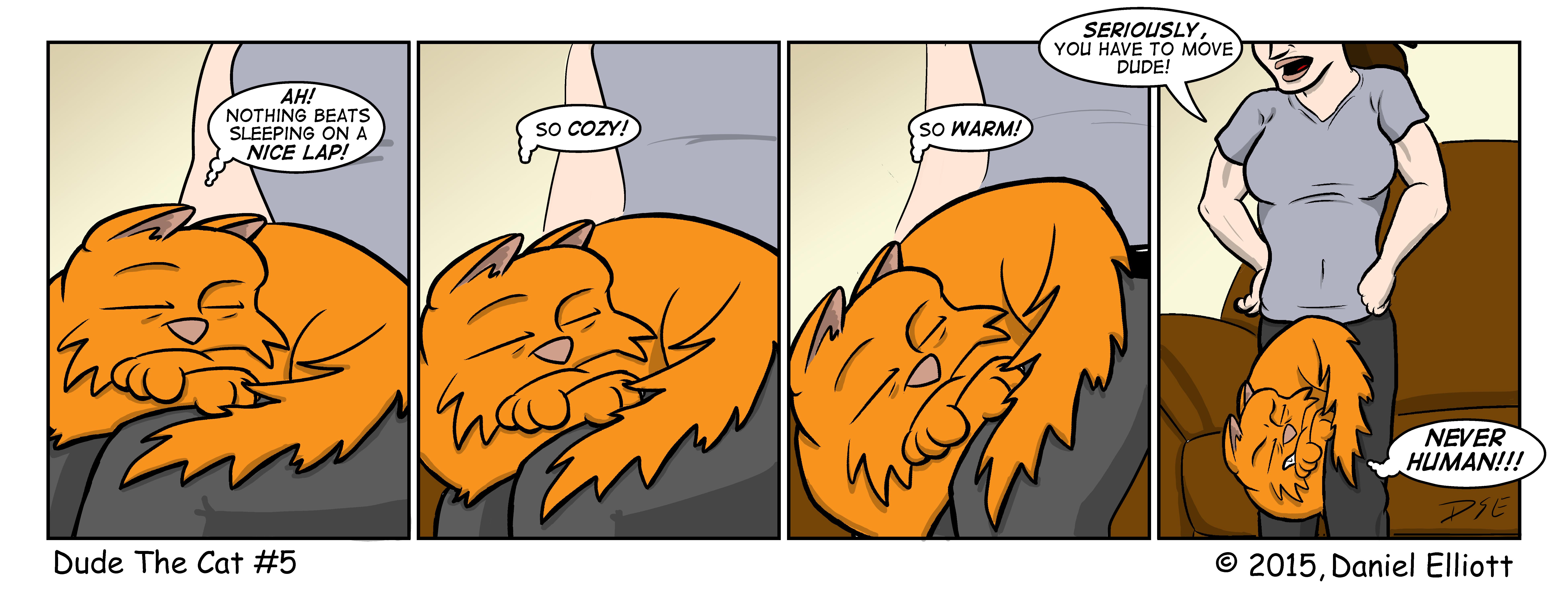 Dude The Cat 005
